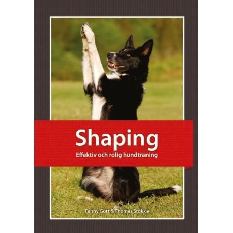 Shaping - Effektiv och rolig hundtrening